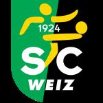 Вайц логотип