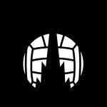 Фалкирк логотип