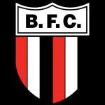 Ботафого СП логотип