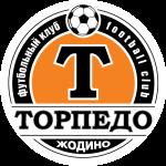 Торпедо-БелАЗ (рез) логотип